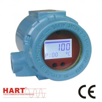 Field Temperature Transmitter TMT199